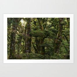 Tree Wall Art Print