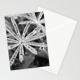 Dew Fuzz Stationery Cards