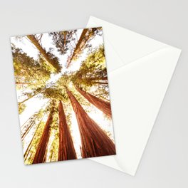 sequoia tree Stationery Cards