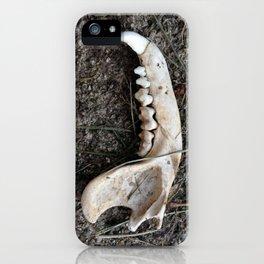 Jaw Bone iPhone Case