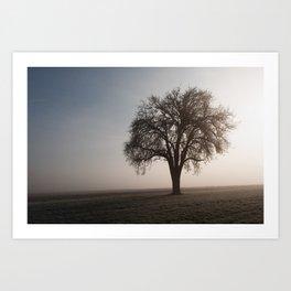 Solitude Frost Art Print