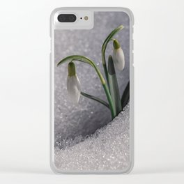 Snowdrop flowers in the snow Clear iPhone Case