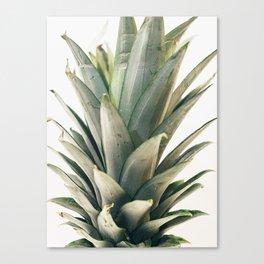 Pineapple Top Canvas Print
