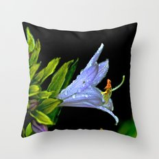 Water Clings to Beauty Throw Pillow