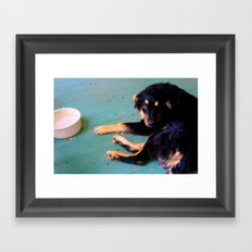 Dog | Rudy Framed Art Print