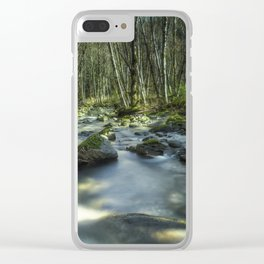 A Companionable Solitude Clear iPhone Case