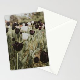 Tulips in Germany Stationery Cards