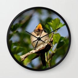 Singing swallow Wall Clock