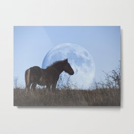 Horse and Moon Metal Print
