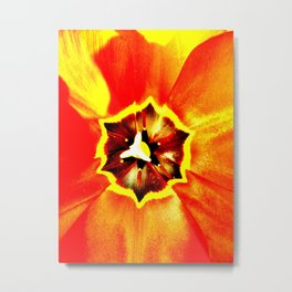 Orange Red Calyx Metal Print