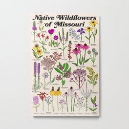 Missouri Wildflowers Metal Print