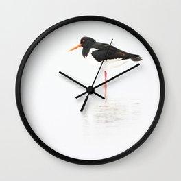 scholeksters scholekster high key oystercatcher  Wall Clock