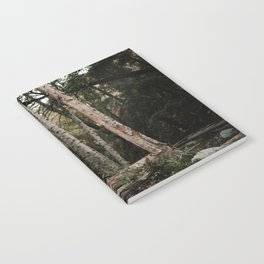 Husky in Forest Notebook