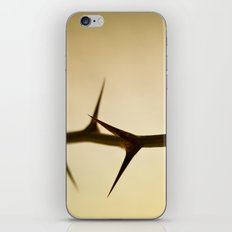 The Sharp Point of Winter iPhone & iPod Skin