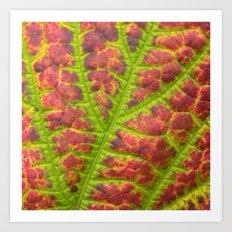 autumn leaf Art Print