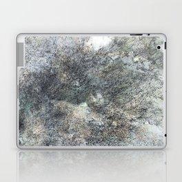 Mountain Rock Laptop & iPad Skin