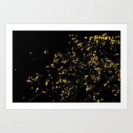 Butter Yellow Palo Brea Flowers on Black Art Print