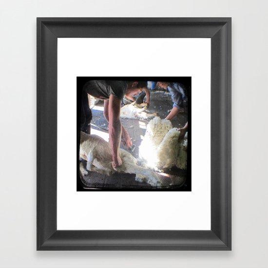 The Shearer - Through The Viewfinder - (TTV) Framed Art Print