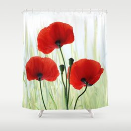 Poppies red 008 Shower Curtain
