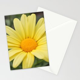 Yellow Daisy Stationery Cards