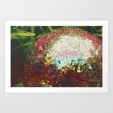 Colorful Ball Art Print