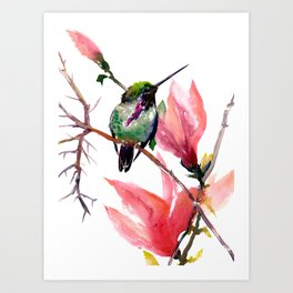 Hummingbird and Magnolia Art Print
