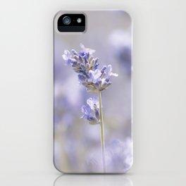 Sweet Lavender iPhone Case