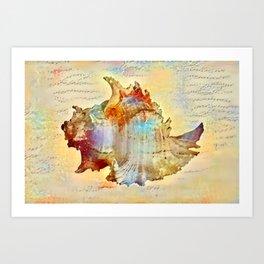 Caracol Rosada Art Print