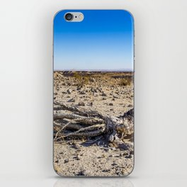 Uprooted Ocotillo Plant in the Middle of Dust and Rocks in the Anza Borrego Desert, California iPhone Skin