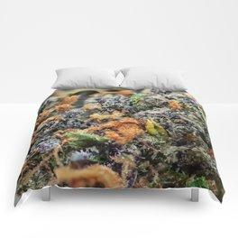 Deep Chunk Close Up Comforters