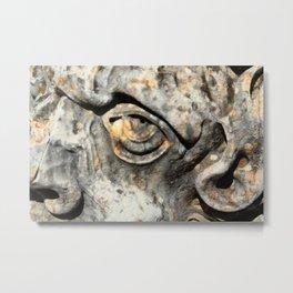 Stone Monster's eye Metal Print