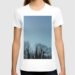 Fog and Forest- wood,mist,romantic, greenery,sunset,dawn,Landes forest,fantasy T-shirt