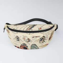 Vintage Insect Identification Chart // Arthropodes by Adolphe Millot XL 19th Century Science Artwork Fanny Pack