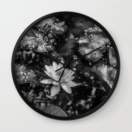 Water lily in a pond Wall Clock