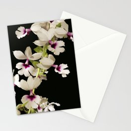Calanthe rosea Orchid Stationery Cards
