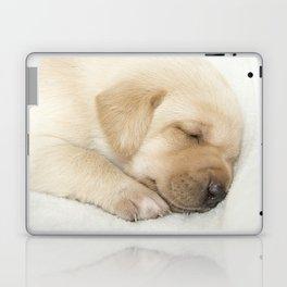 Sleeping labrador puppy Laptop & iPad Skin