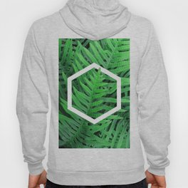 Exagon into the ferns Hoody