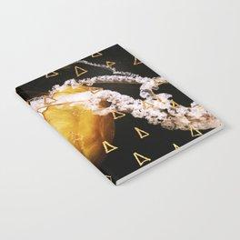 Golden Burn (nautic animal, nature photography) Notebook
