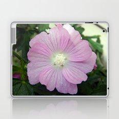Pink Musk Mallow Laptop & iPad Skin
