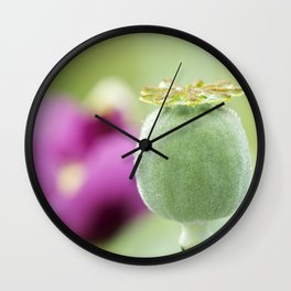 Hungarian Blue Bread Seed Poppy | Seed Pod Alternate Perspective Wall Clock