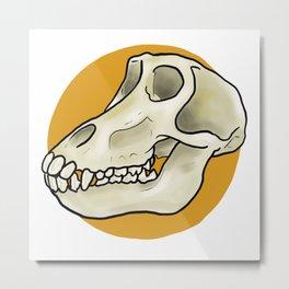 Baboon Skull Metal Print