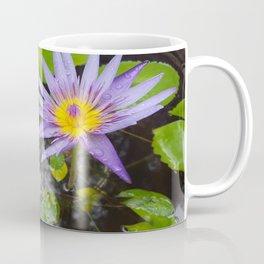 Enchanting Lotus Coffee Mug