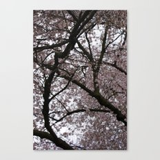 Spring in London Canvas Print