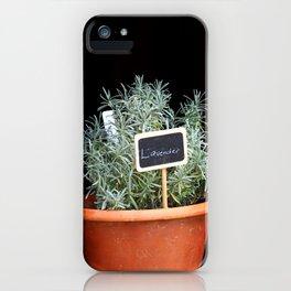 Lavender Plant iPhone Case
