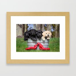Puppies Framed Art Print