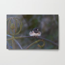 Baby it's cold outside Metal Print