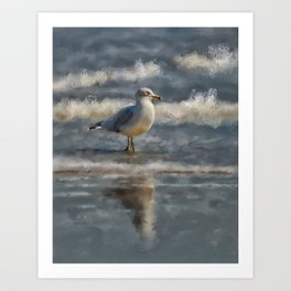 Seagull By The Seashore Art Print