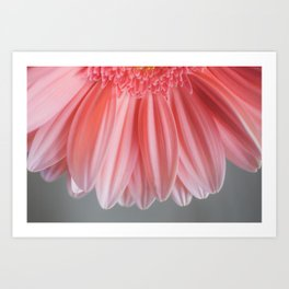 Pink With Layers Art Print