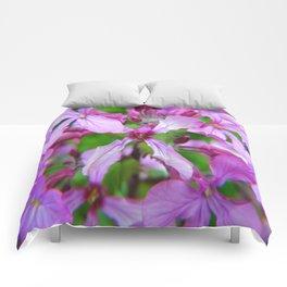 Purple Blooms Comforters