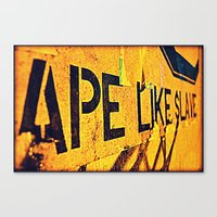 ape Canvas Prints featuring Ape by Michael S.